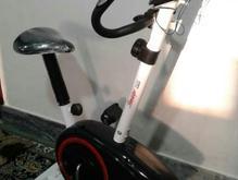 دوچرخه ثابت ورزشی در شیپور