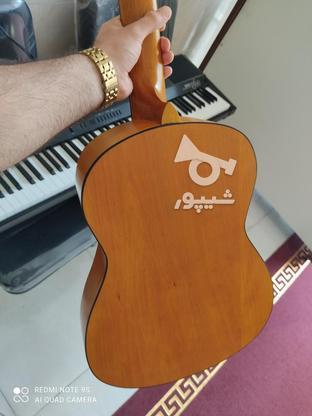 گیتار اکبند با گارانتی 1 ساله مدل dm1 در گروه خرید و فروش ورزش فرهنگ فراغت در مازندران در شیپور-عکس3