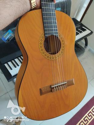 گیتار اکبند با گارانتی 1 ساله مدل dm1 در گروه خرید و فروش ورزش فرهنگ فراغت در مازندران در شیپور-عکس7