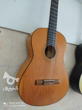 گیتار اکبند با گارانتی 1 ساله مدل dm1 در گروه خرید و فروش ورزش فرهنگ فراغت در مازندران در شیپور-عکس6