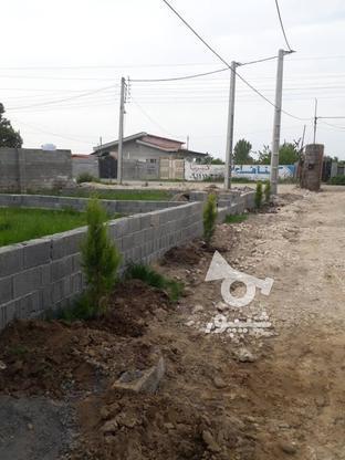 150 متر زمین مسکونی دارای سند بهنمیر روشندان در گروه خرید و فروش املاک در مازندران در شیپور-عکس2
