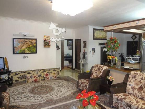 آپارتمان 83متری جنب شهرداری در گروه خرید و فروش املاک در مازندران در شیپور-عکس4