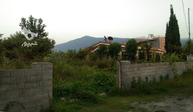 زمین داخل بافت مسکونی 330 متر در کلارآباد در گروه خرید و فروش املاک در مازندران در شیپور-عکس1