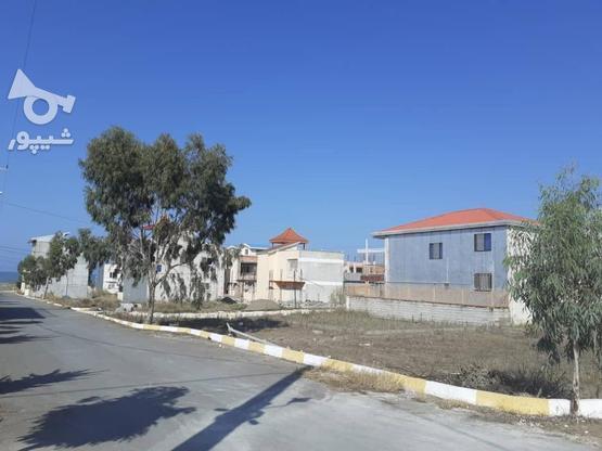 فروش زمین ساحلی با سند 150 متری در گروه خرید و فروش املاک در مازندران در شیپور-عکس1