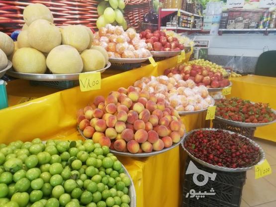 نیازمند کارگر میوه فروشی در گروه خرید و فروش استخدام در مازندران در شیپور-عکس2