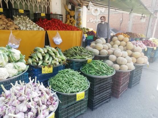 نیازمند کارگر میوه فروشی در گروه خرید و فروش استخدام در مازندران در شیپور-عکس1