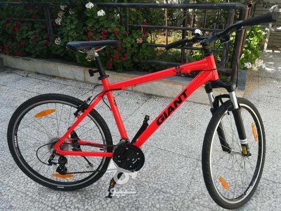دوچرخه جاینت مدل اسنپ در گروه خرید و فروش ورزش فرهنگ فراغت در مازندران در شیپور-عکس1
