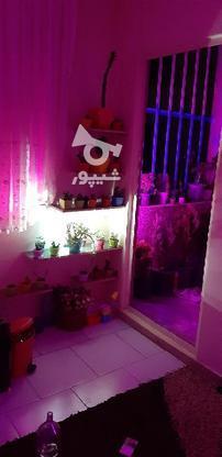 نور کاری مخفی نور مخفی لایت اتاق خواب و منزل نور نما در گروه خرید و فروش خدمات و کسب و کار در البرز در شیپور-عکس6