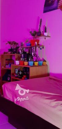 نور کاری مخفی نور مخفی لایت اتاق خواب و منزل نور نما در گروه خرید و فروش خدمات و کسب و کار در البرز در شیپور-عکس5