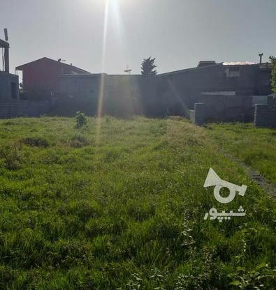 فروش زمین مسکونی 256 متری در کوچه ساحلی چمخاله در گروه خرید و فروش املاک در گیلان در شیپور-عکس1