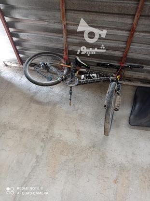 دوچرخه سالم در گروه خرید و فروش ورزش فرهنگ فراغت در همدان در شیپور-عکس2
