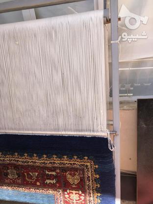 فرش و دار قالی در گروه خرید و فروش ورزش فرهنگ فراغت در همدان در شیپور-عکس2