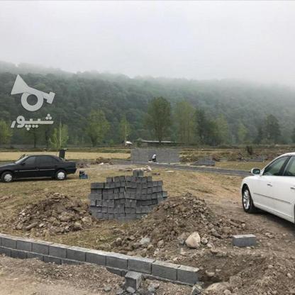 فروش 300 متر زمین پلاک 2 جنگل در گروه خرید و فروش املاک در مازندران در شیپور-عکس1