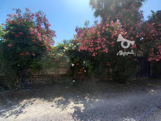 فروش ویلا باغ 580 متری رویان بنجکول در گروه خرید و فروش املاک در مازندران در شیپور-عکس5