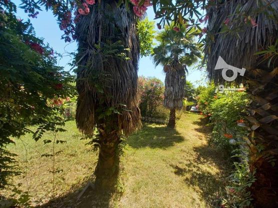 فروش ویلا باغ 580 متری رویان بنجکول در گروه خرید و فروش املاک در مازندران در شیپور-عکس3