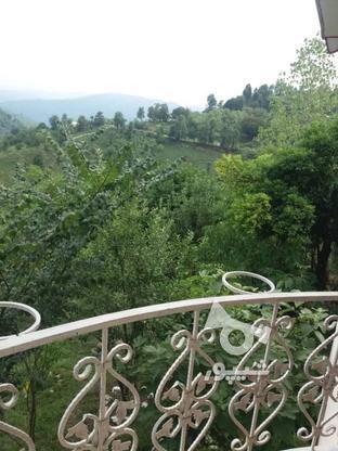 فروش ویلا 1000 متر در سیاهکل در گروه خرید و فروش املاک در گیلان در شیپور-عکس1