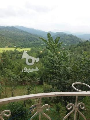 فروش ویلا 1000 متر در سیاهکل در گروه خرید و فروش املاک در گیلان در شیپور-عکس5