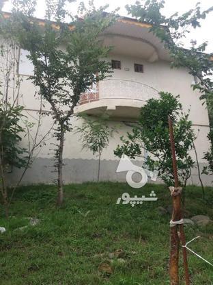 فروش ویلا 1000 متر در سیاهکل در گروه خرید و فروش املاک در گیلان در شیپور-عکس7