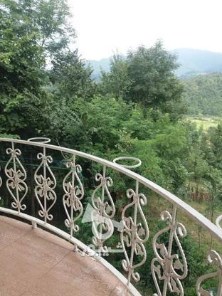 فروش ویلا 1000 متر در سیاهکل در گروه خرید و فروش املاک در گیلان در شیپور-عکس2