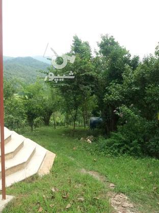 فروش ویلا 1000 متر در سیاهکل در گروه خرید و فروش املاک در گیلان در شیپور-عکس6