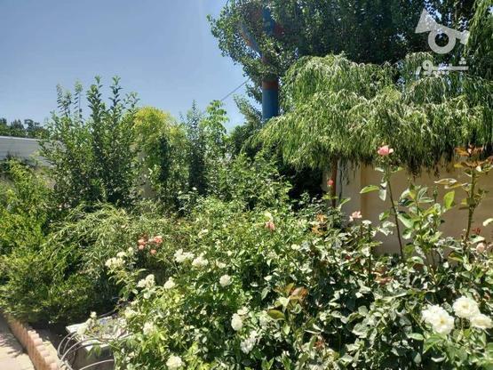 فروش باغ وویلا 500 متر در ملارد در گروه خرید و فروش املاک در تهران در شیپور-عکس8