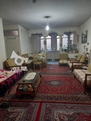 60 متر تکخواب زیر قیمت منطقه در گروه خرید و فروش املاک در تهران در شیپور-عکس2