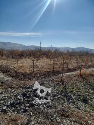 فروش زمین1000 متر در ابسرد در گروه خرید و فروش املاک در تهران در شیپور-عکس7