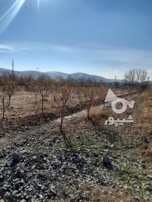 فروش زمین1000 متر در ابسرد در گروه خرید و فروش املاک در تهران در شیپور-عکس2