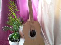 گیتار برند آلگریا در شیپور-عکس کوچک