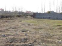 فروش زمین مسکونی 100000 متر در بهنمیر در شیپور-عکس کوچک