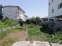 زمین داخل بافت مسکونی 423 متر در چالوس در شیپور-عکس کوچک