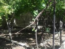 فروش باغ 800 متر در شهریار در شیپور
