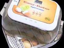 دستگاه جوجه کشی مدل ایزی باتور 5 - ظرفیت 12 عددی در شیپور