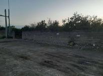 فروش زمین 2400 متر در امیرکلا در شیپور-عکس کوچک