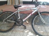 دوچرخه کاملا تمیز در شیپور-عکس کوچک