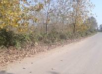 زمین/با ویوی ابدی/سوددهی بالا در شیپور-عکس کوچک
