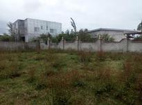 فروش زمین مسکونی 282 متر در سیاه کلا در شیپور-عکس کوچک