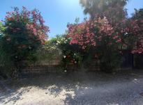 فروش ویلا باغ قدیمی 580 متری رویان بنجکول  در شیپور-عکس کوچک