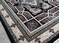 فرش خزان مشکی در شیپور-عکس کوچک