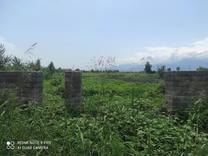 فروش زمین مسکونی 814 متر دراطراف رودسر در شیپور