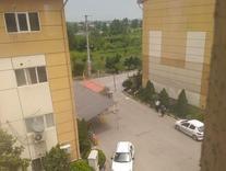 فروش آپارتمان 80 متر در شمال امامزاده عبدالله در شیپور
