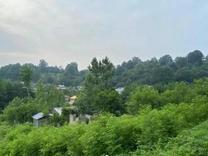 فروش خانه و کلنگی 1300 متر در سوستان لاهیجان در شیپور