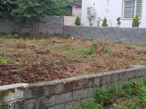 فروش زمین مسکونی 250 متر در درزیکلا در شیپور