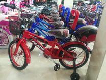 دوچرخه prado در شیپور