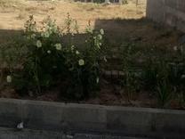 فروش زمین ویلایی 204 متر در شهر جدید هشتگرد در شیپور
