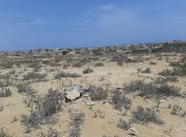 زمین 300 متر عثمان آباد در شیپور-عکس کوچک