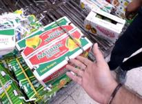 فروش عمده و پخش انبه پاکستانی درجه یک در شیپور-عکس کوچک