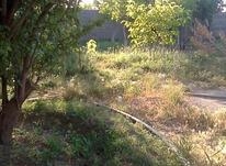 770متر باغ در آبشینه در شیپور-عکس کوچک