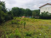 فروش زمین مسکونی 950 متر در سوخته کوه لاهیجان در شیپور
