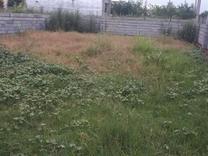 فروش زمین مسکونی 250 متر در عبدل ده در شیپور